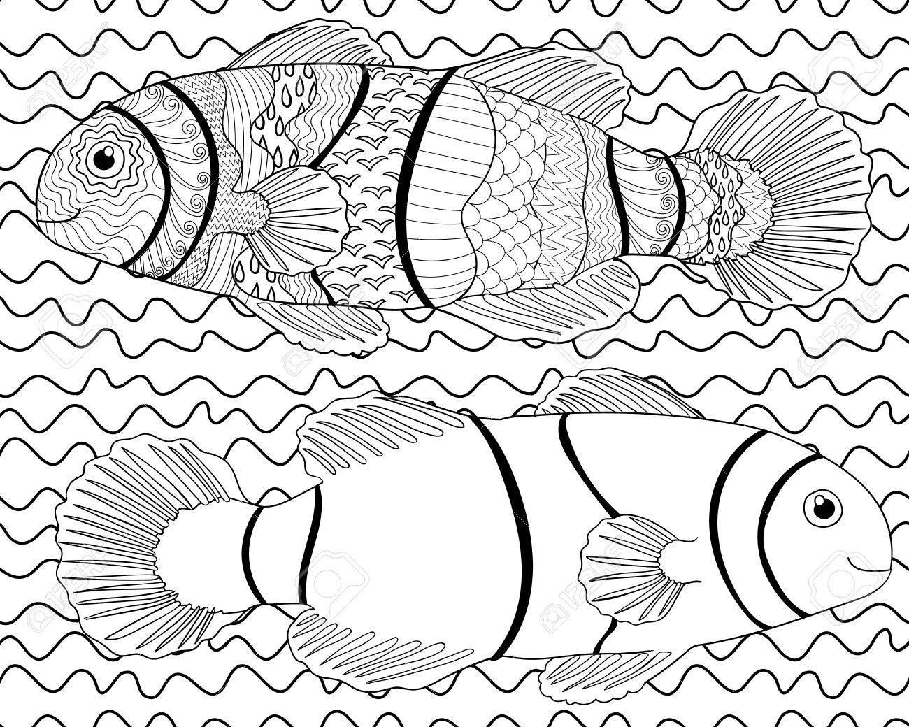 how to draw a clownfish learn how to draw a clownfish fishes step by step draw a how clownfish to