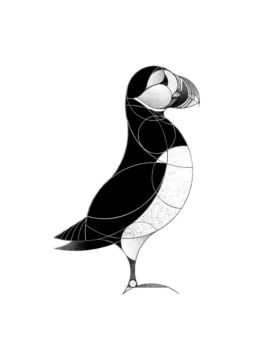 how to draw a puffin free north coast puffin drawing to download colour puffin how draw a to
