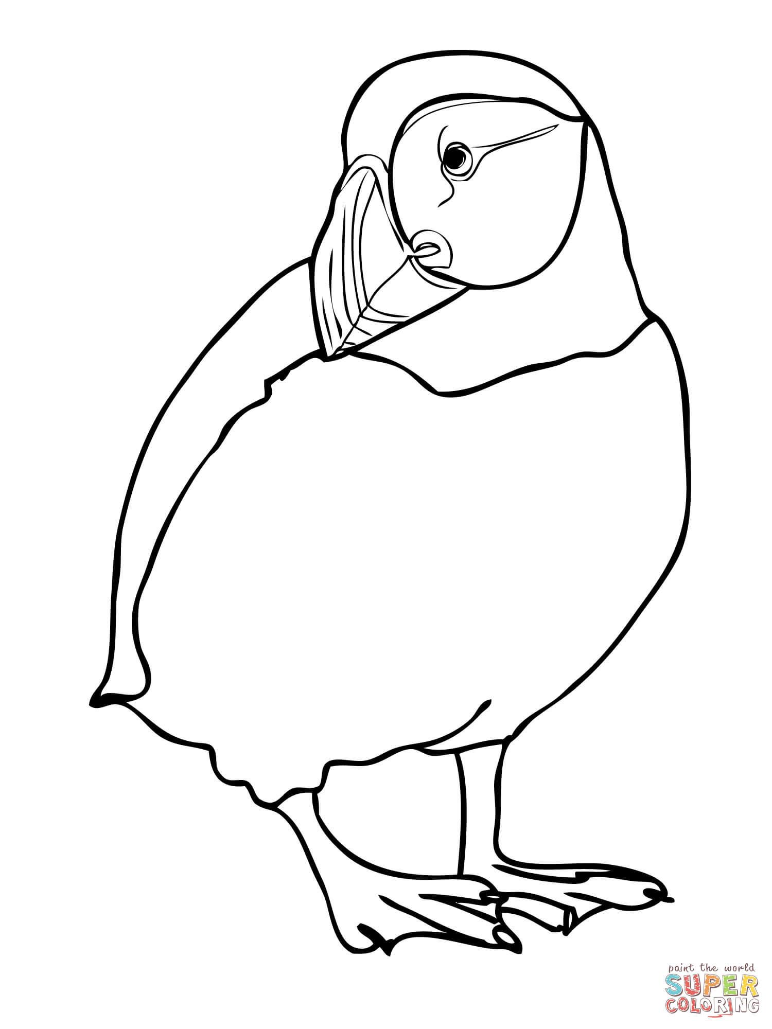 how to draw a puffin how to draw a puffin draw a how puffin to