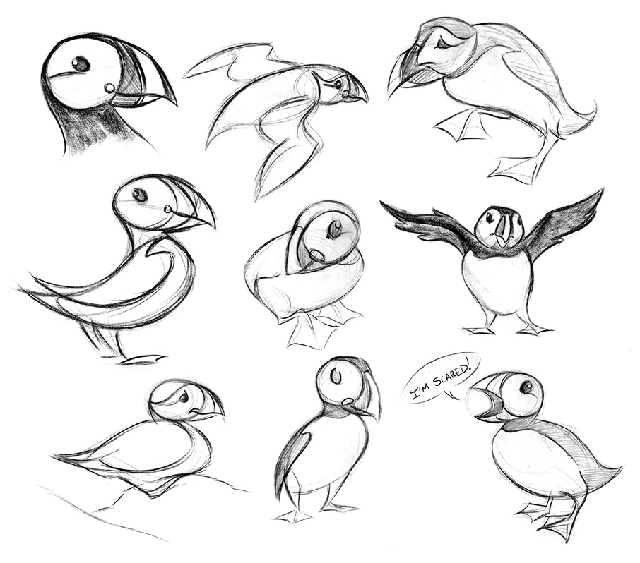 how to draw a puffin how to draw a puffin step by step drawing tutorials for to a draw how puffin
