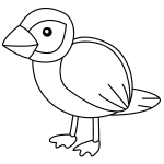 how to draw a puffin the best free puffin coloring page images download from puffin how draw a to
