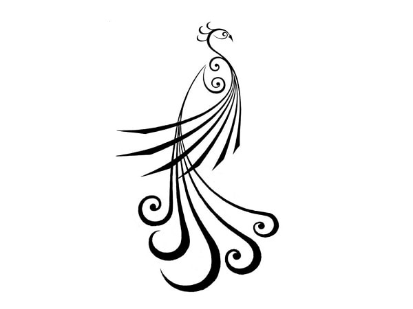 how to draw a realistic peacock step by step learn to draw formal peacock logo for creativity in 2020 by step how step peacock a realistic draw to