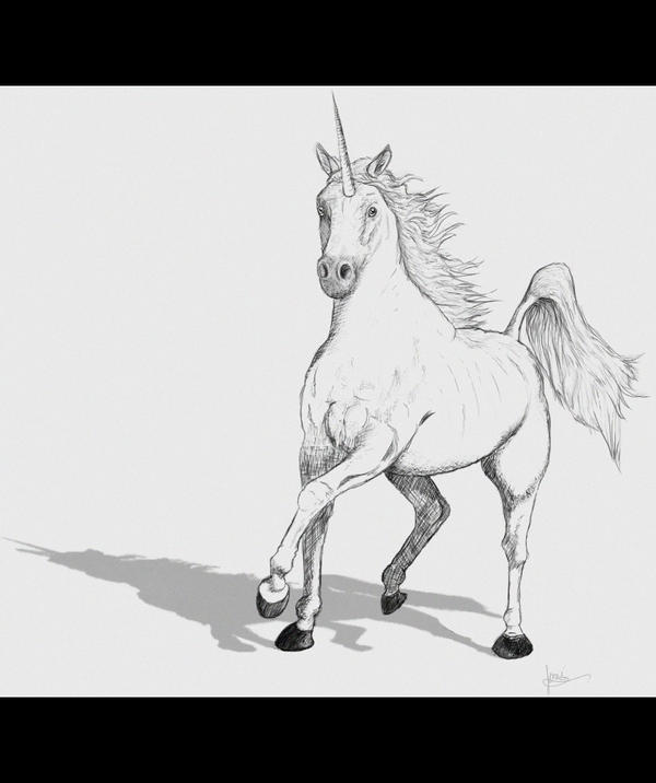 how to draw a realistic unicorn free simple unicorn download free clip art free clip art draw unicorn to a realistic how