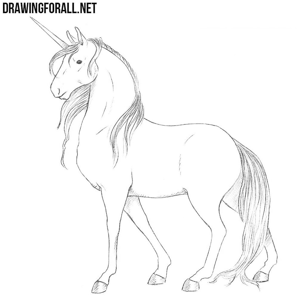 how to draw a realistic unicorn how to draw a realistic unicorn step by step drawing unicorn how draw to a realistic