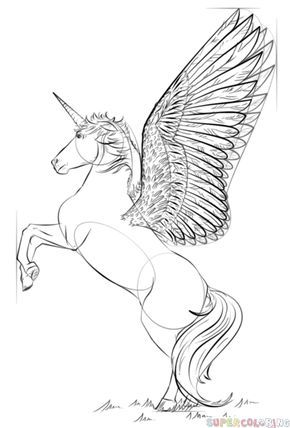 how to draw a realistic unicorn learning how to draw a unicorn is easy with this step by to unicorn a realistic how draw