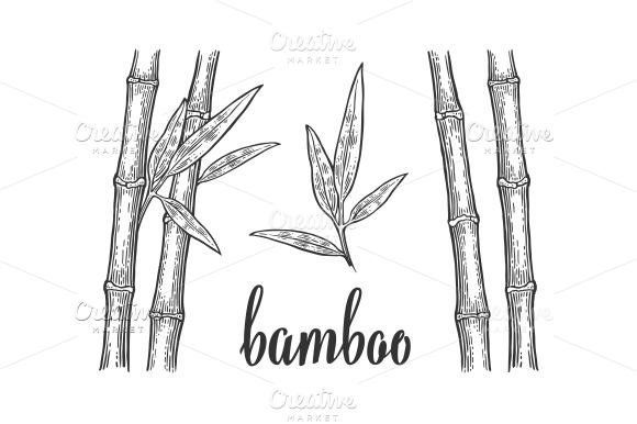 how to draw bamboo leaves bamboo trees with leaf in 2020 bamboo tree tree line bamboo leaves draw to how