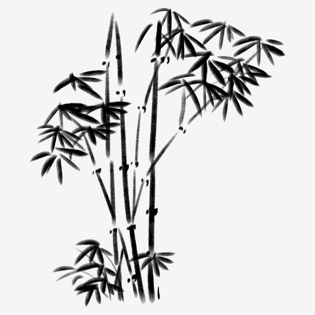 how to draw bamboo leaves collection of bamboo clipart free download best bamboo draw bamboo how to leaves