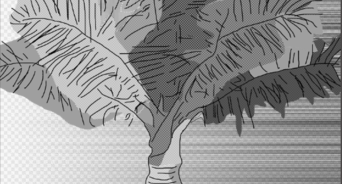 how to draw bamboo leaves draw bamboo drawings manga drawing bamboo drawing leaves bamboo how to draw