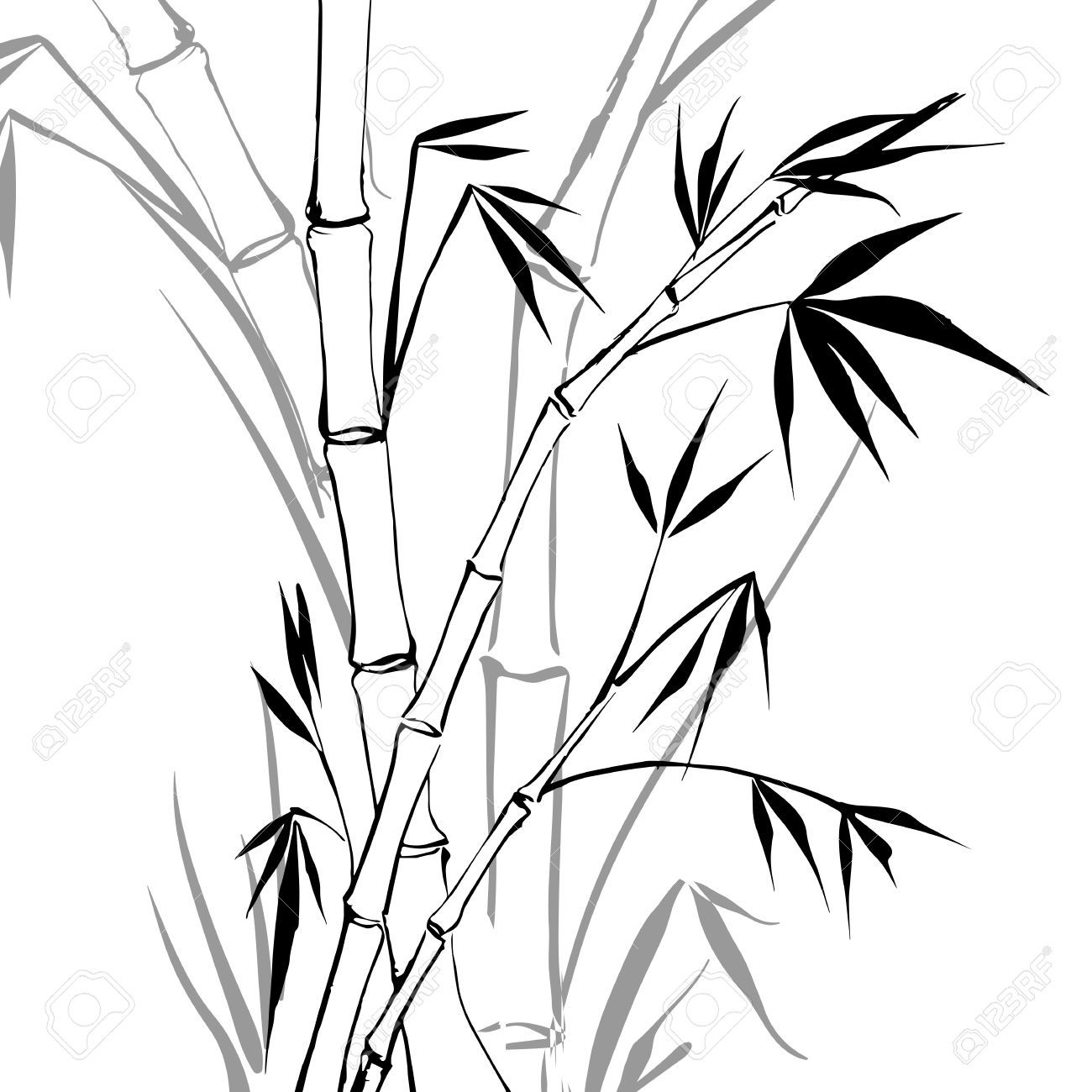 how to draw bamboo leaves how to draw a bamboo step by step drawing tutorials draw how bamboo to leaves