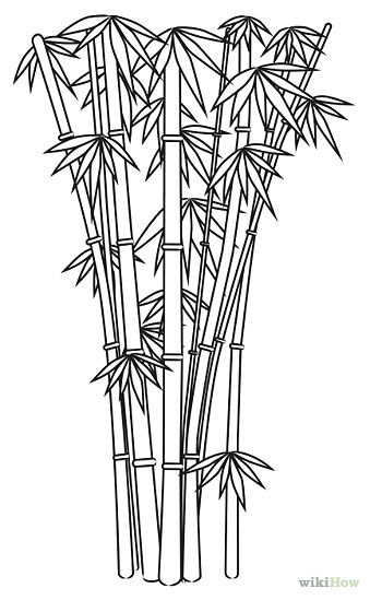 how to draw bamboo leaves most ancient bamboo style outlinecontour in 2020 to how leaves draw bamboo
