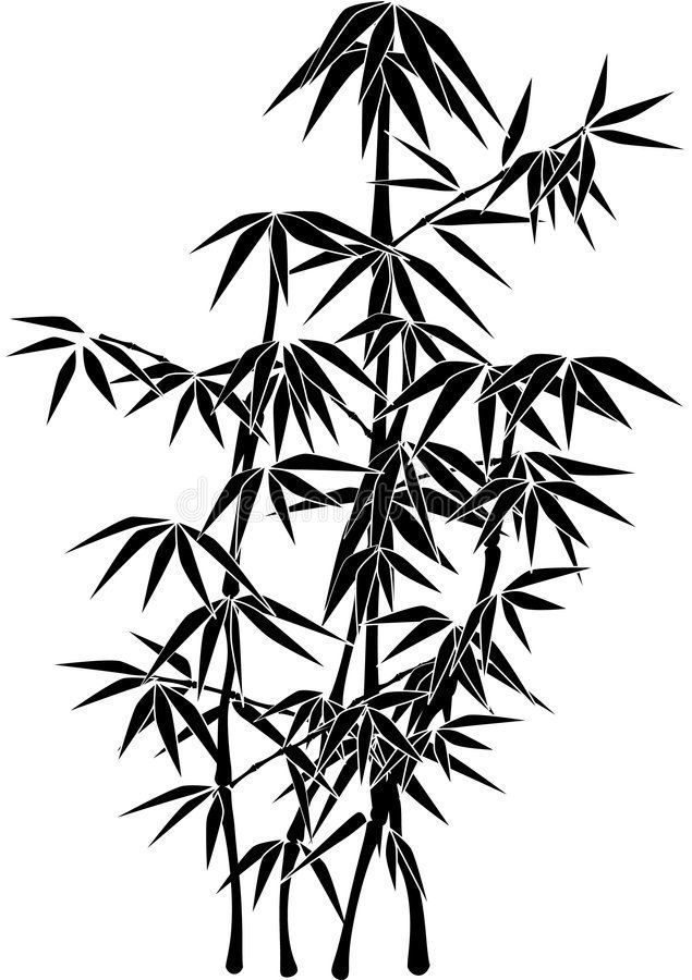 how to draw bamboo leaves riesige bambuspflanze silhouette stock vector draw how bamboo leaves to