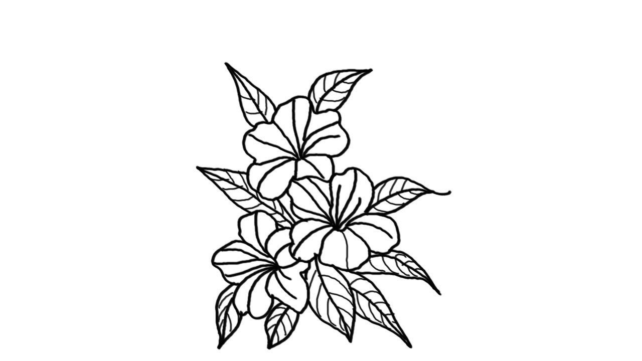 how to draw bunch of flowers step by step beautiful leaf and flower drawings free template ppt how of to step step bunch flowers by draw