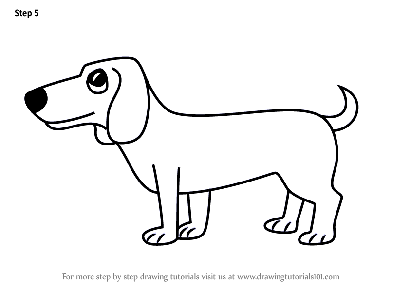 how to draw dachshund step by step drawing of dachshund face how to draw a dachshund 25 draw dachshund step step by to how