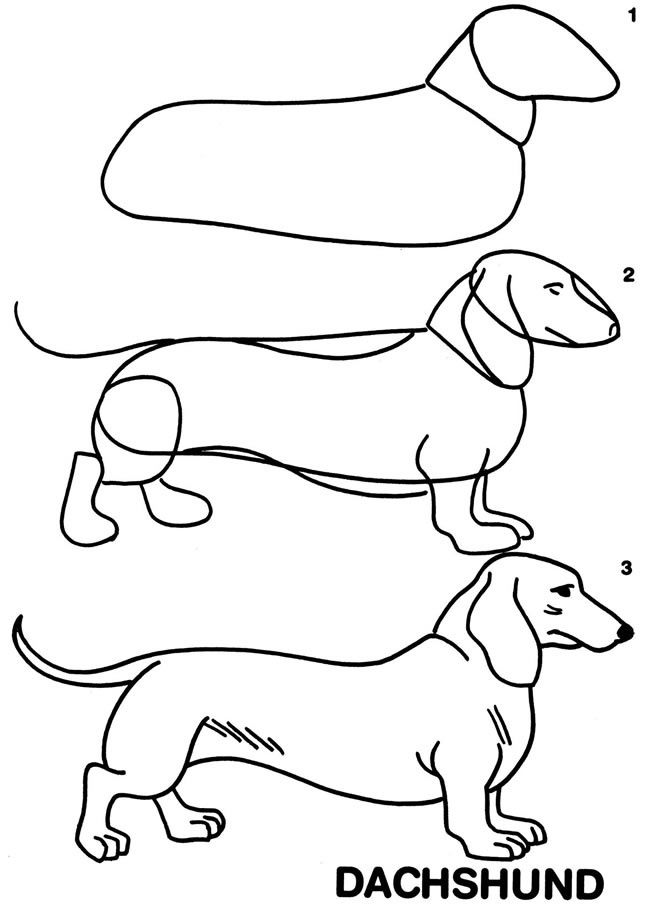 how to draw dachshund step by step how to draw a dachshund step by step 3jpg 768538 how dachshund step draw step by to