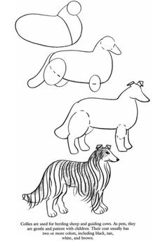 how to draw dachshund step by step learn how to draw a dachshund animal drawings drawing step how dachshund step by to draw