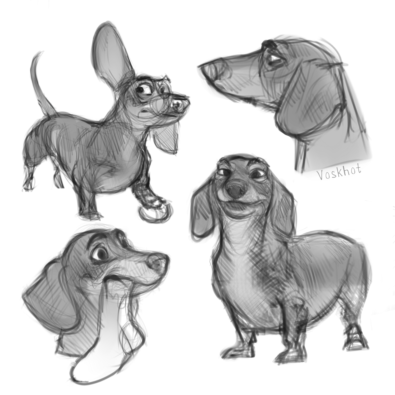 how to draw dachshund step by step learn how to draw a labrador face farm animals step by draw step by step dachshund to how