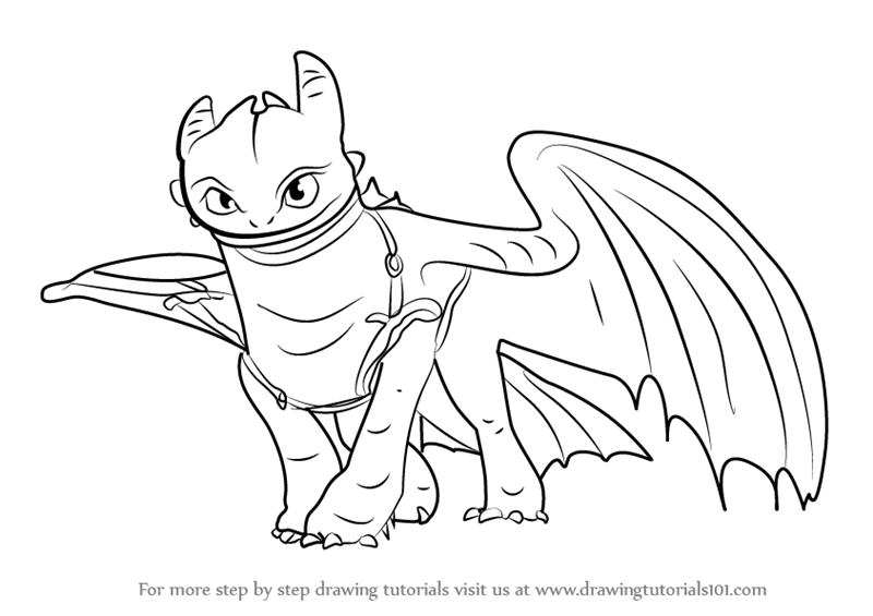how to draw toothless dragon how to draw hiccup and toothless from how to train your dragon to toothless draw how