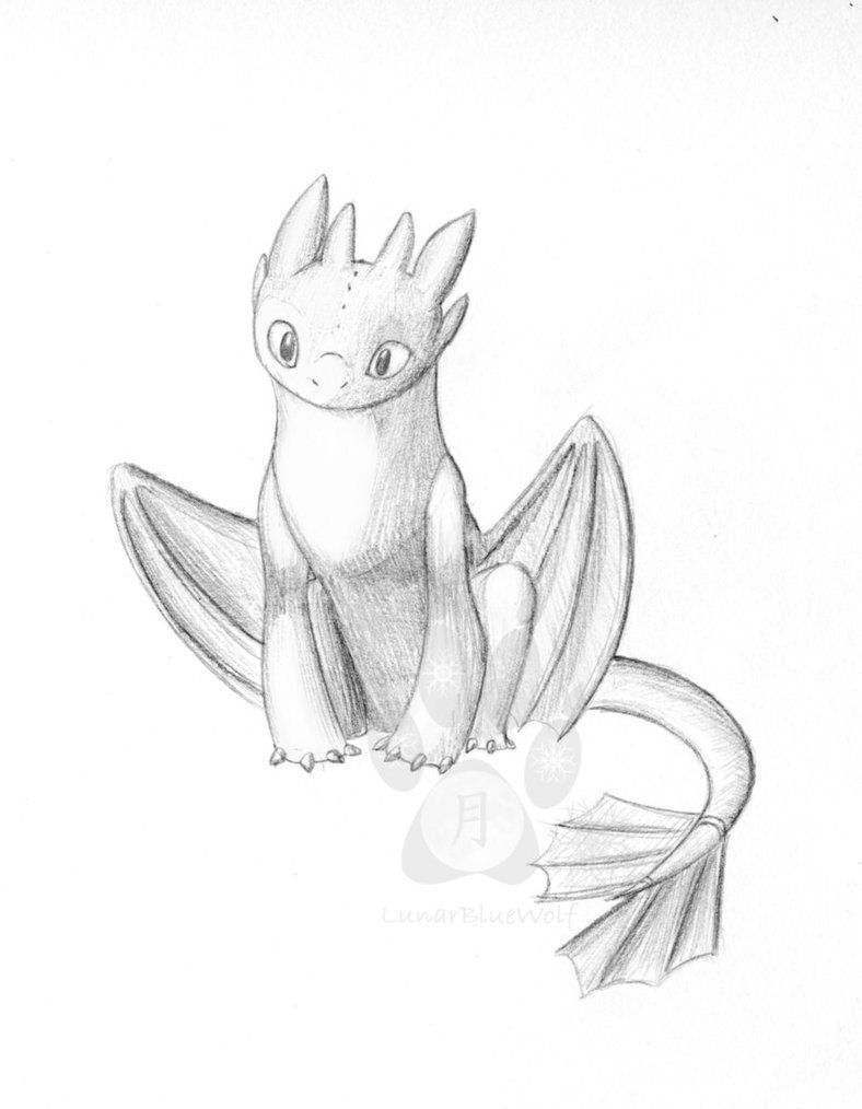 how to draw toothless dragon toothless sketches by enolianslave on deviantart to how toothless draw dragon
