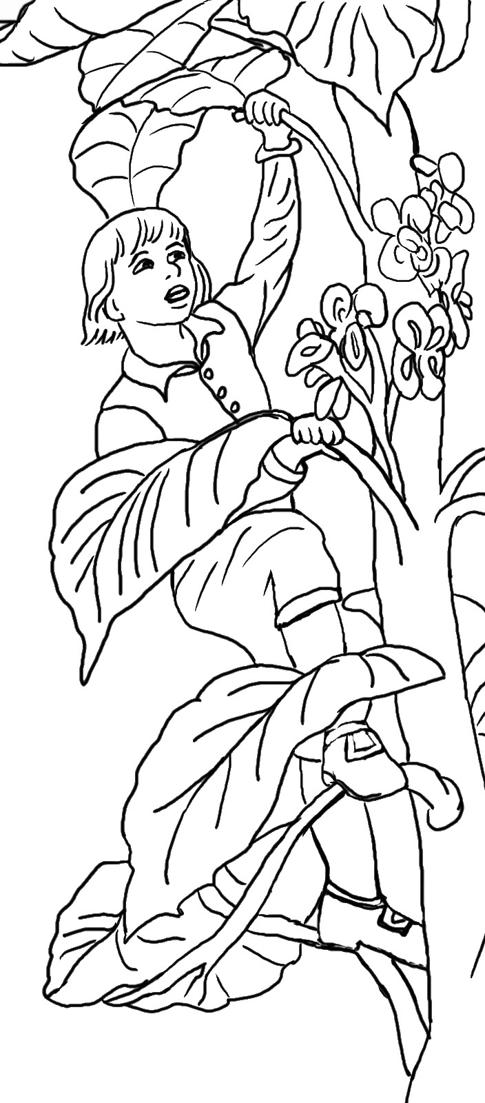 jack and the beanstalk colouring pictures jack and the beanstalk coloring pages coloring home colouring the and jack beanstalk pictures