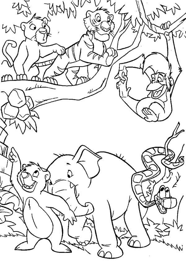 jungle book coloring pages for kids jungle book to color for kids jungle book kids coloring coloring book pages for jungle kids