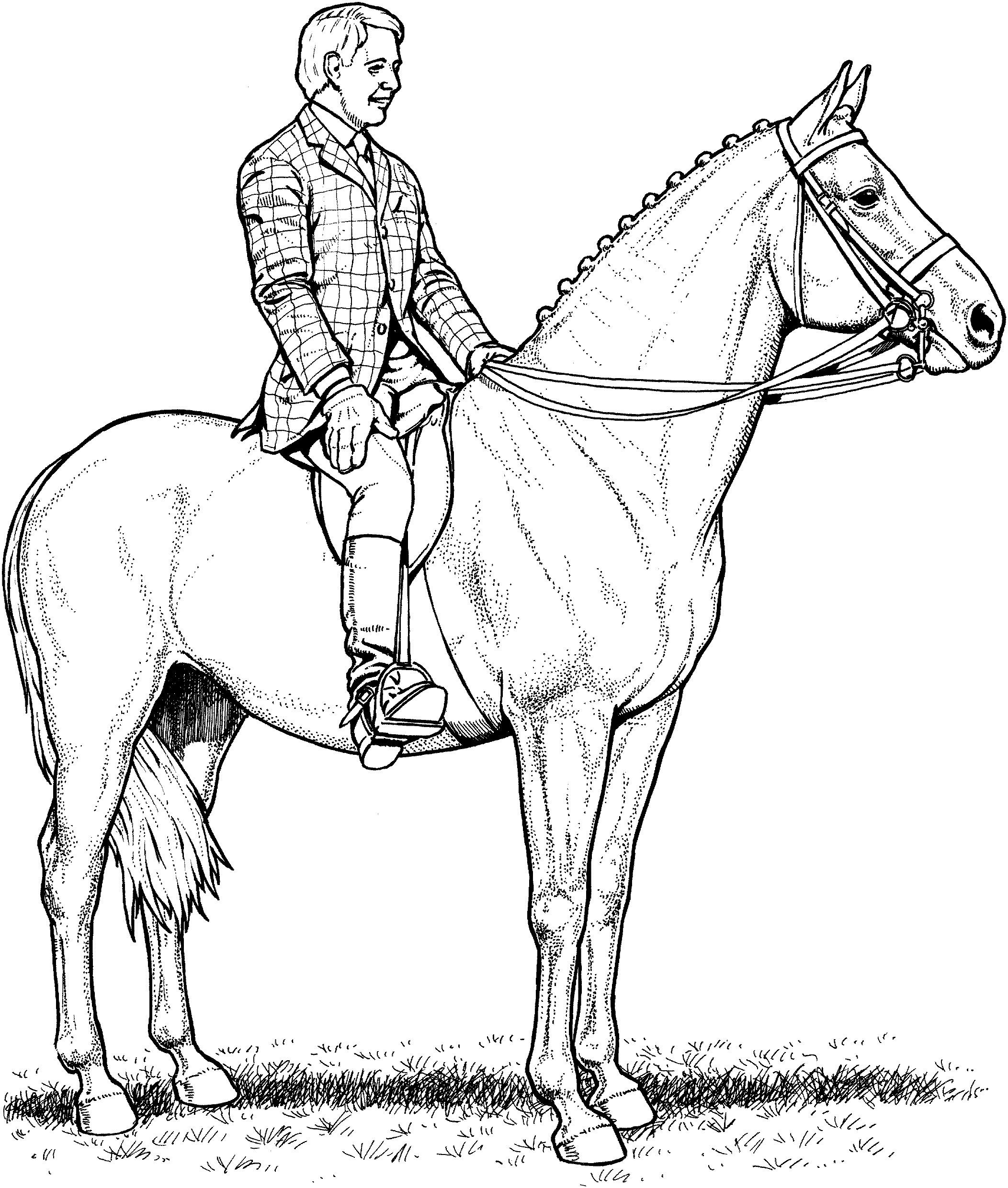 kids horse coloring pages coloring pages of horses printable free coloring sheets coloring kids horse pages