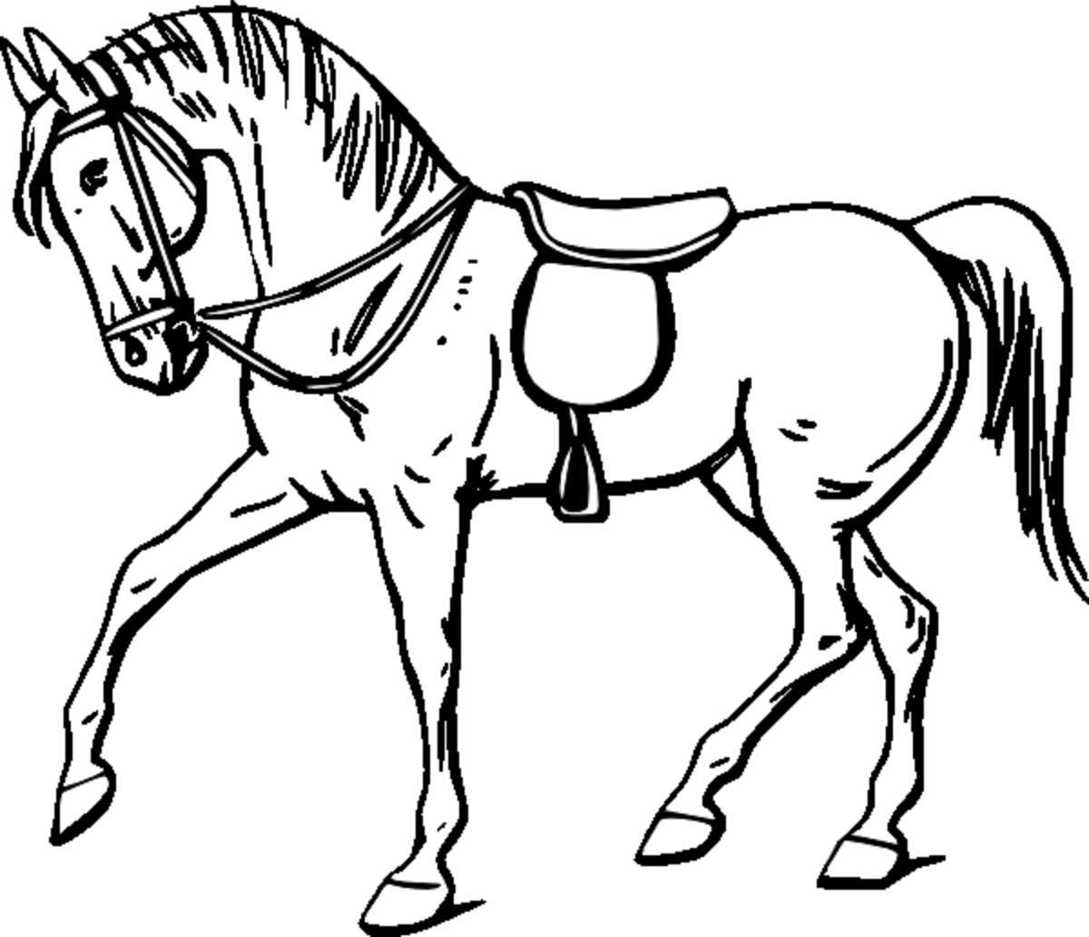 kids horse coloring pages colour drawing free hd wallpapers horse for kids coloring coloring kids pages horse