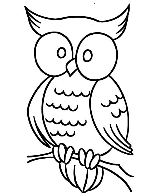 large animal coloring pages coloring pages for animals elephant big animals coloring large pages coloring animal
