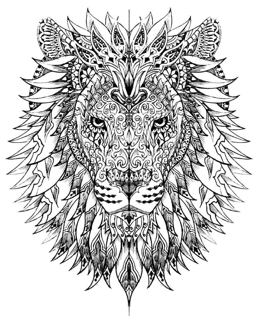 large animal coloring pages leopard hard coloring pages free large images cat animal large pages coloring
