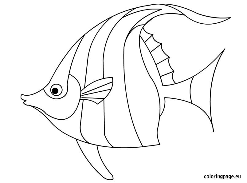 large fish coloring page download big eyed tropical fish coloring page coloring fish coloring large page