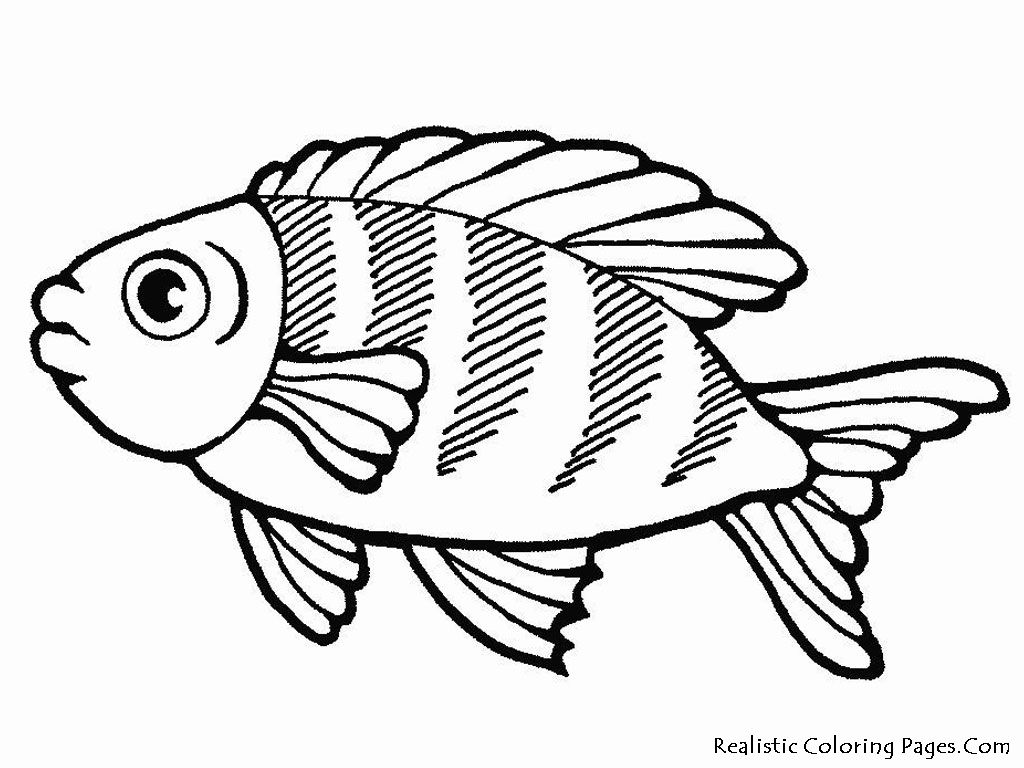 large fish coloring page fish coloring pages coloring pages to download and print coloring large fish page