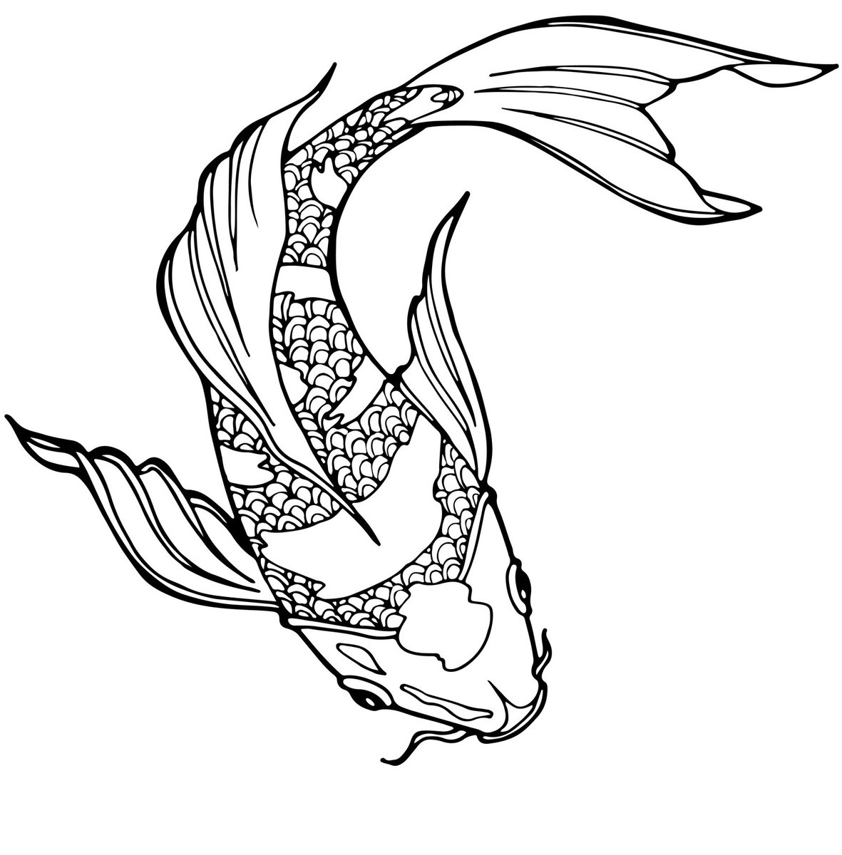 large fish coloring page free rainbow fish outline download free clip art free fish coloring large page