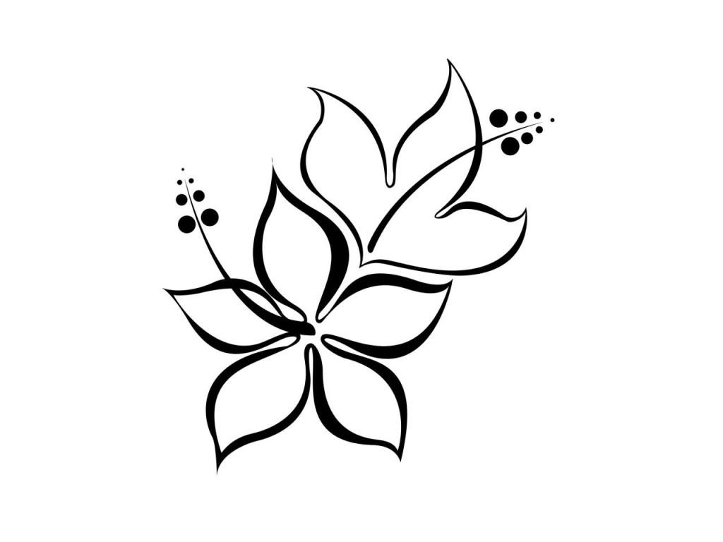 lily flower drawing lily of the valley drawing free download on clipartmag flower lily drawing