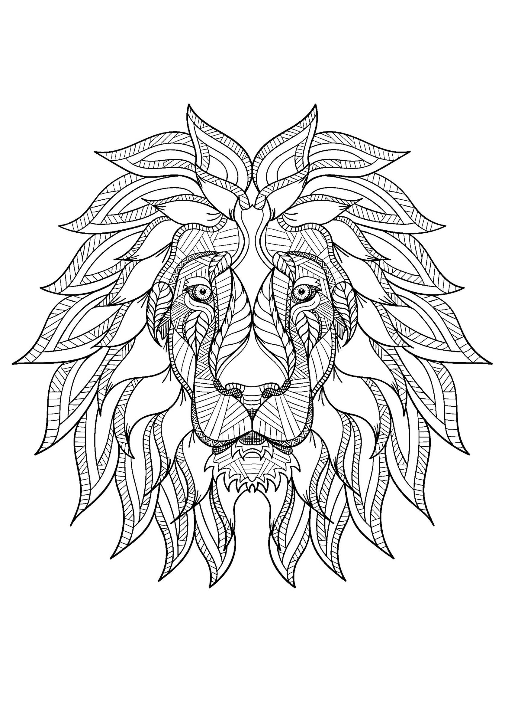 lion color page lion coloring pages to download and print for free color lion page