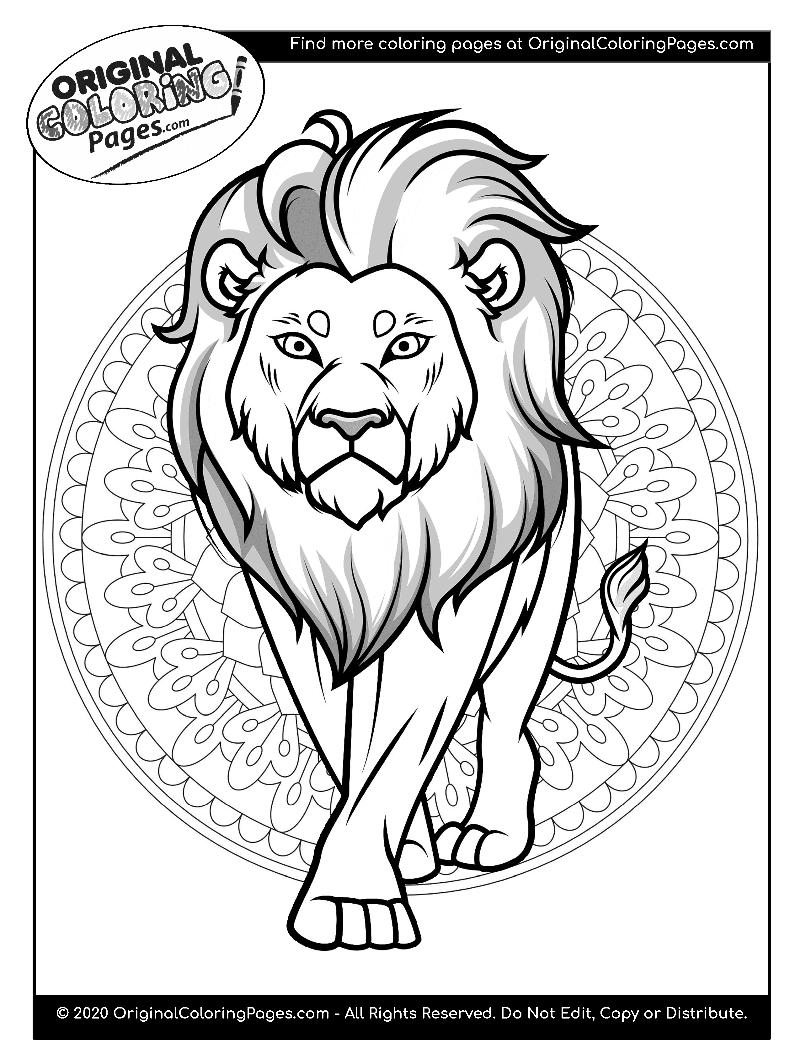 lion color page lion real animals coloring pages for kids printable free page lion color