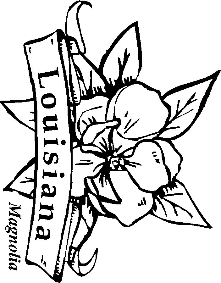 louisiana state symbols coloring pages louisiana state symbols coloring pages danasrfltop symbols pages louisiana state coloring