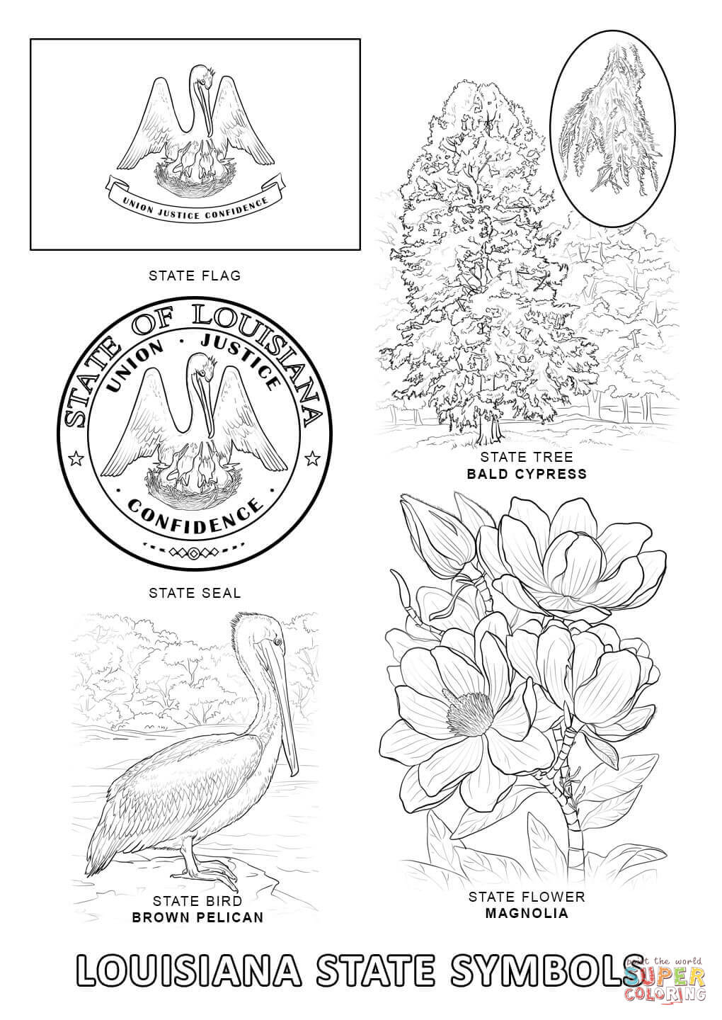 louisiana state symbols coloring pages office of the governor kathleen babineaux blanco state pages symbols louisiana state coloring