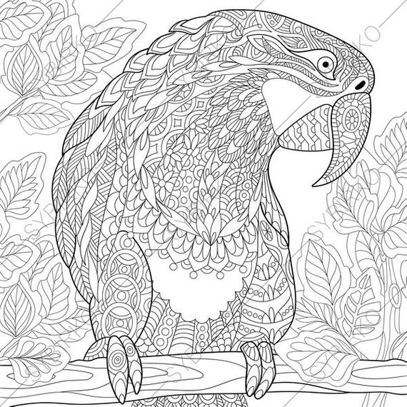 macaw bird coloring page parrot coloring pages download and print parrot coloring coloring bird macaw page
