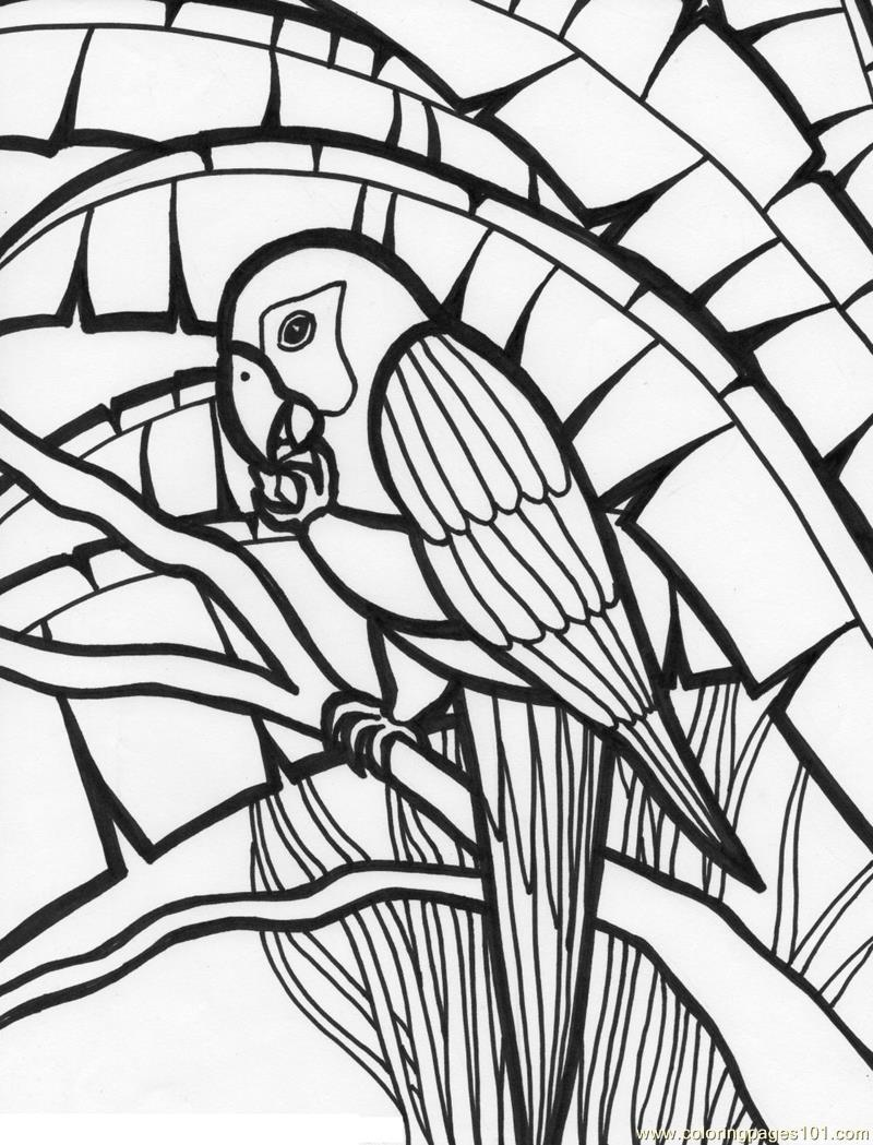 macaw bird coloring page parrots coloring pages to download and print for free macaw page bird coloring
