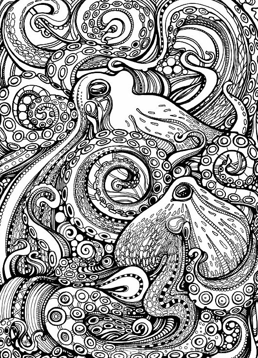 mandala octopus coloring page 8 best tattoo octopus holding anchor in mandala style coloring mandala octopus page