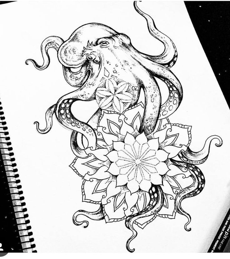 mandala octopus coloring page image result for octopus mandala coloring page mandala page mandala octopus coloring