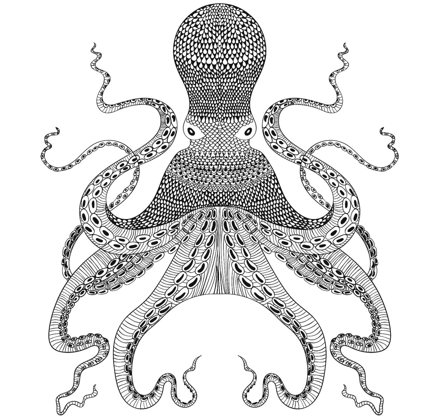 mandala octopus coloring page pin by sophzeid on coloring book pages anti stress page coloring mandala octopus