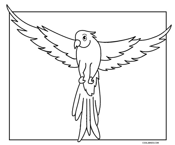 parrot pictures to colour parrot coloring page pitara kids network pictures to colour parrot