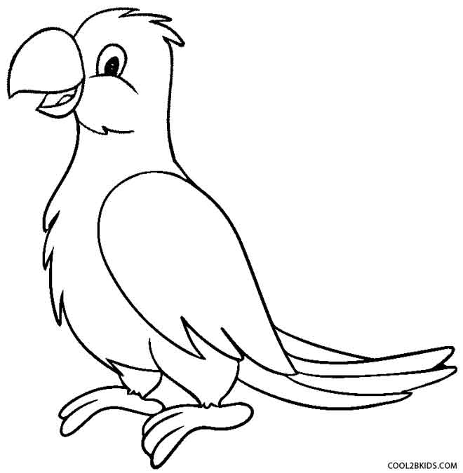 parrot pictures to colour parrots coloring pages to download and print for free parrot colour pictures to