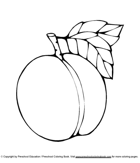 peach coloring pages peach coloring pages coloring pages to download and print coloring pages peach