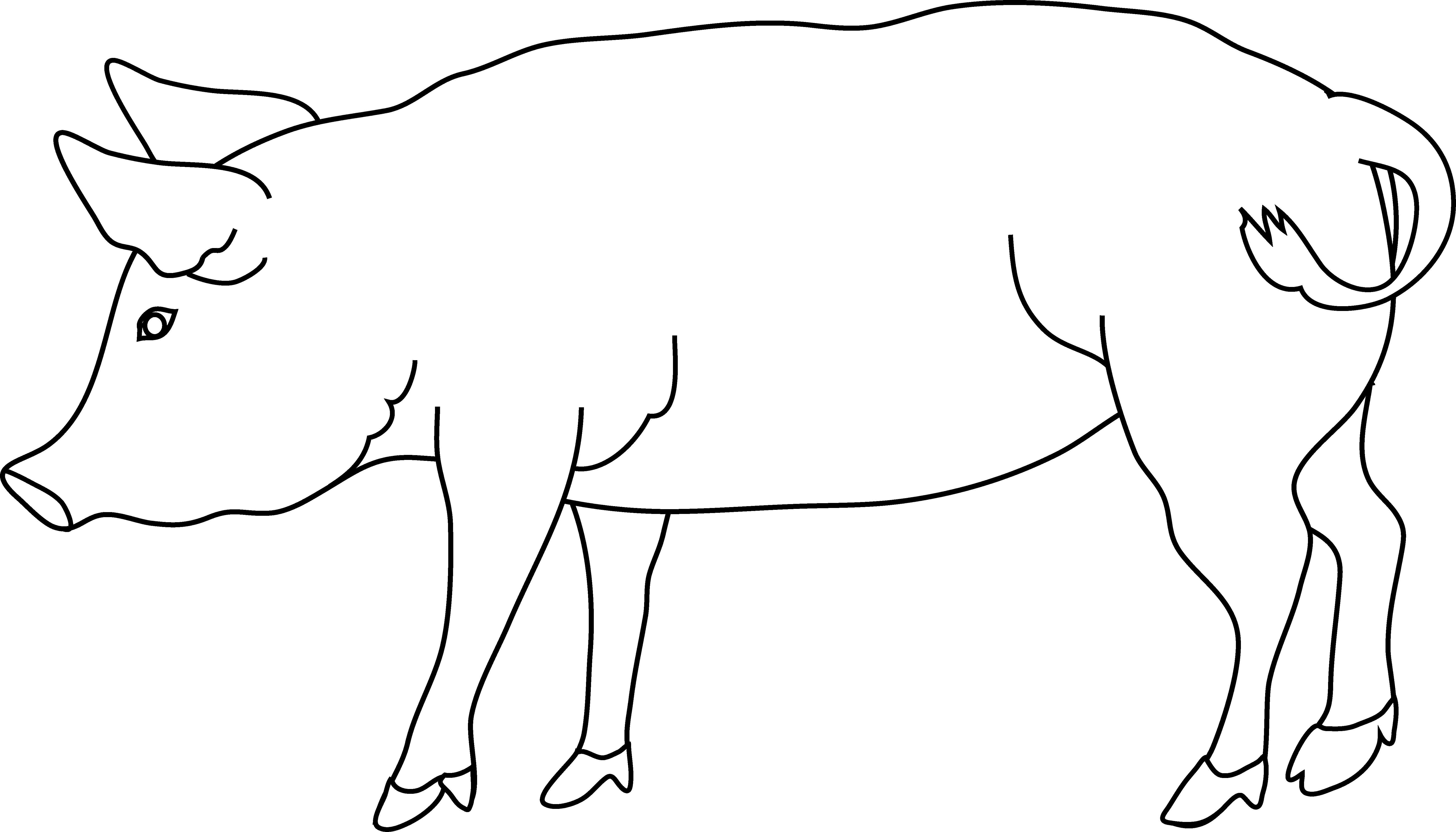 pig outline pig clipart outline pig outline transparent free for pig outline