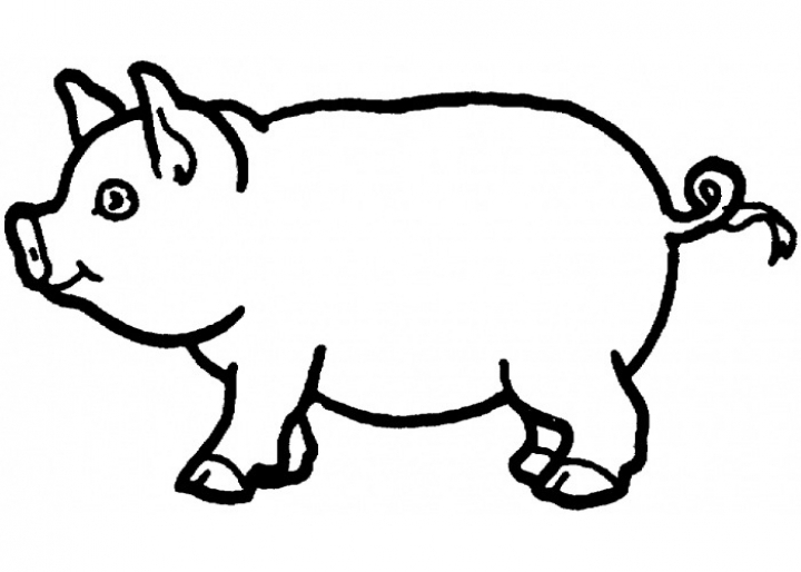 pig pictures to print get this pig coloring pages free ha18l print pig pictures to