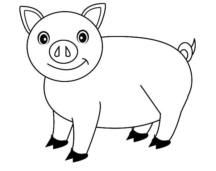pig pictures to print pig template animal templates pig print pictures to