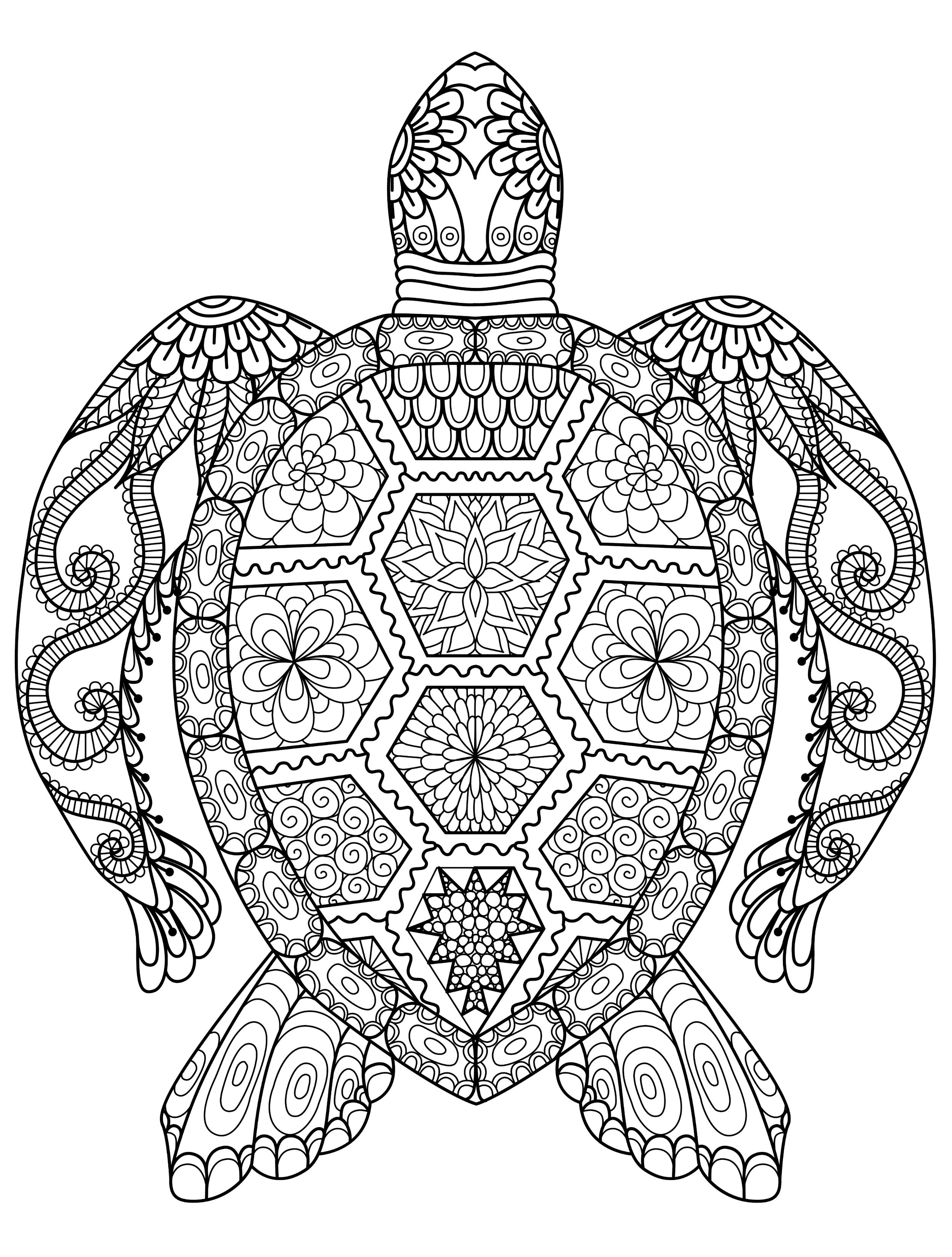printable detailed coloring pages animal coloring pages for adults best coloring pages for pages detailed coloring printable