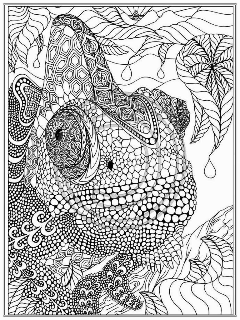 printable detailed coloring pages printable iguana adult coloring pages free adult detailed coloring printable pages