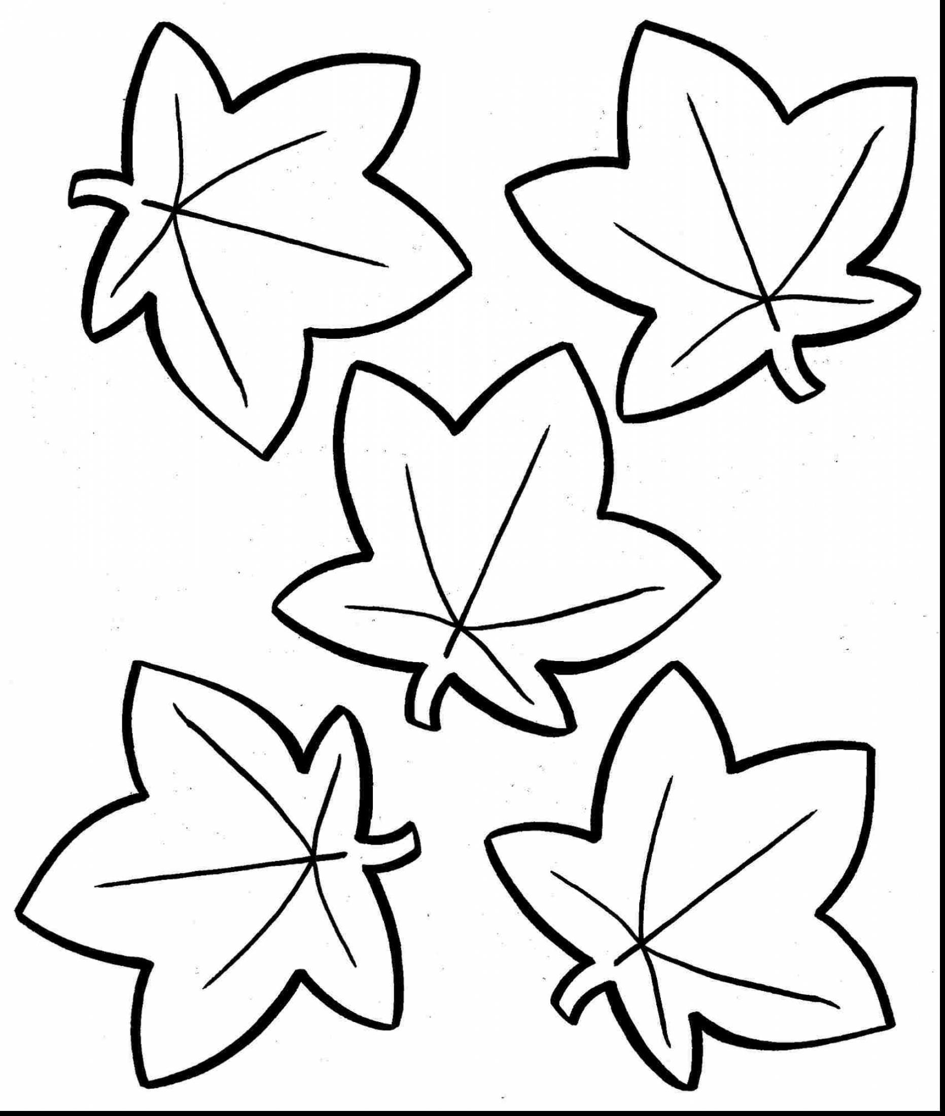 pumpkin and leaves coloring pages 21 awesome image of fall leaves coloring pages in 2020 and pages pumpkin leaves coloring